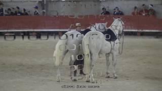 ville  du  crés  le 21 08 2016  spectacle equestre  avec Carla Pelissier