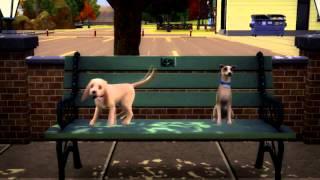 My Dogs In Love!   Sims 3 (Даже у собак есть любовь)