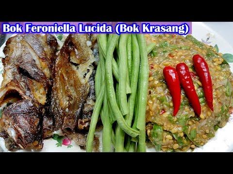 asian-food,-khmer-cooking-recipes,-bok-feroniella-lucida,-home-food-factory