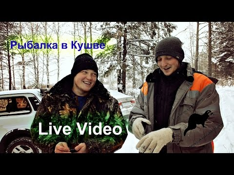 Рыбалка в Кушве -  участники РОвК  Live Video