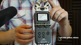 Zoom H5 Demo and Overview