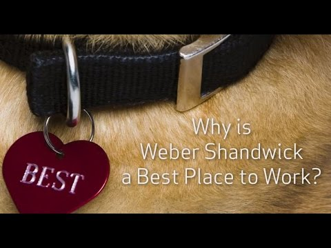 Why is Weber Shandwick a Best Place to Work?