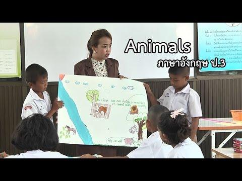 ภาษาอังกฤษ ป.3 Animals ครูอนงค์พร ชัยสุข