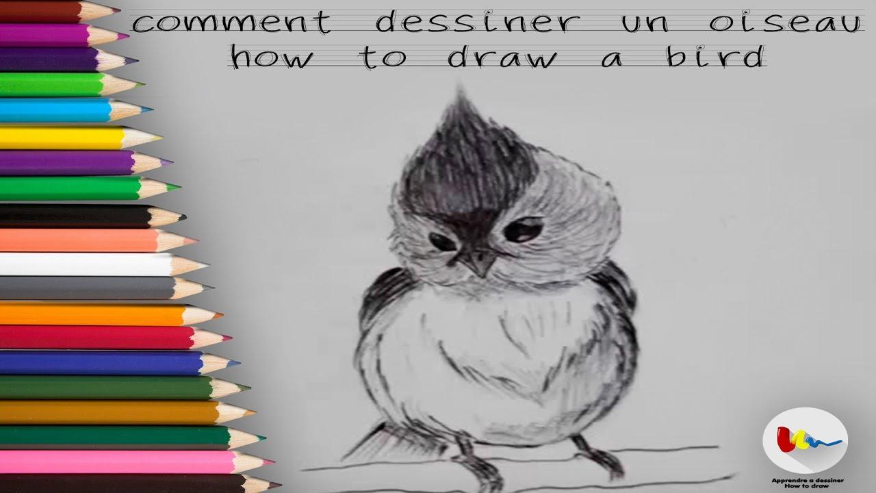 Comment dessiner un oiseau youtube - Dessin facile a faire et beau ...