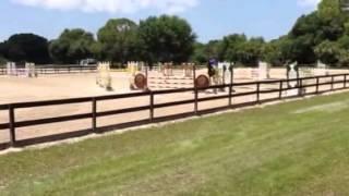Bada Bing Sale Video - Fox Lea Farms - Low Adult Jumpers
