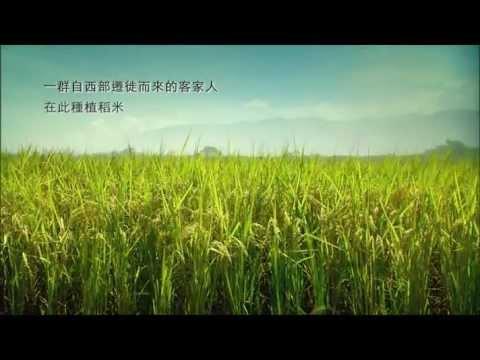 《黃金稻浪》搶先看 - YouTube