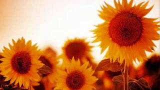 Mariah Carey - Sunflowers for Alfred Roy