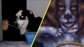 Algo raro le pasa al perro... YouTube Videos