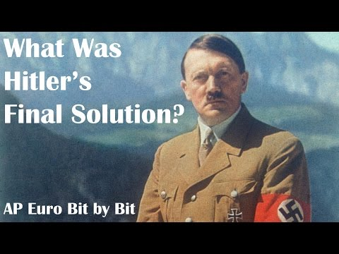 What Was Hitler's Final Solution? AP Euro Bit By Bit #39