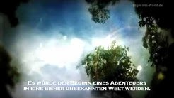 "[Trailer] PSP - ""Digimon Adventure"" (Ger Sub)"