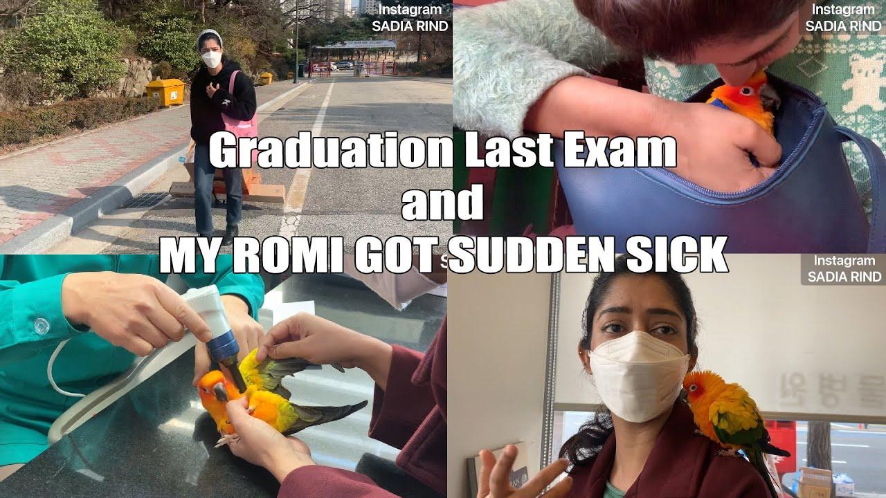 🇰🇷Last exam of my student life and Romi got suddenly sick | SADIA RIND