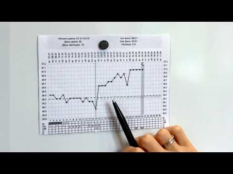 График базальной температуры - помощник в зачатии! Имплантация эмбриона.
