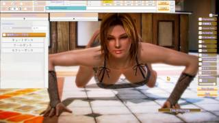 HoneyStudio DEAD OR ALIVE 5 Tina-Go on girl do your thing
