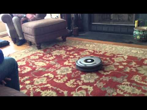 Snacks the French Bulldog vs. Roomba Vac