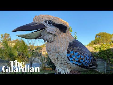 Giant kookaburra built during lockdown takes 'flight'