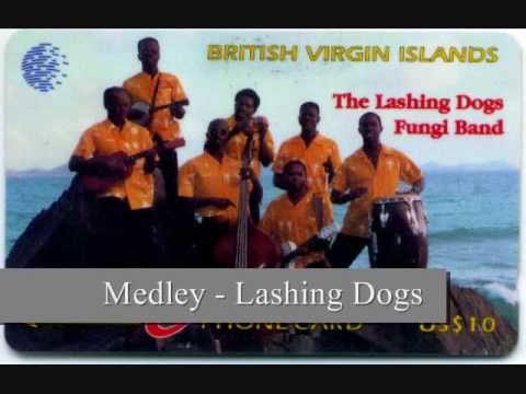 Medley - Lashing Dogs