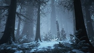 Dark Winter Music & Medieval Fantasy Music - Arctic Forest