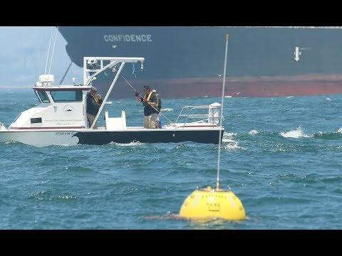 CDIP Buoys at Scripps Institution of Oceanography