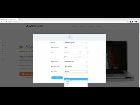 How to Acethinker Online Video Converter