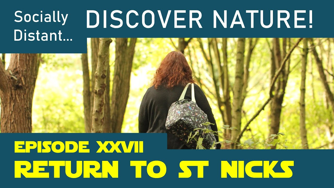 Return to St Nicks - Discover Nature #27