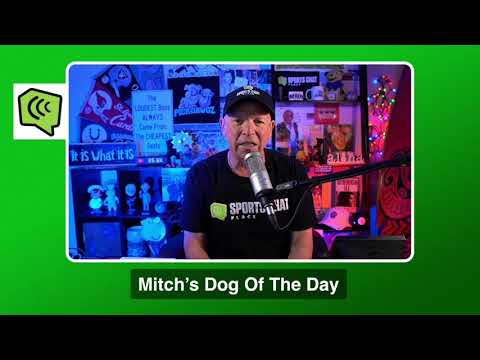 Mitch's Dog of the Day 11/28/20: Free College Football Pick CFB Picks, Predictions and Betting Tip