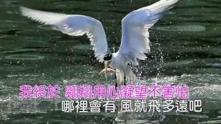 隱形的翅膀-張韶涵歌詞《Karaoke 》