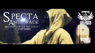 Specta ANTI WACK