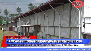 Dampak Corona Pt Olympic Furniture Gemilang Phk 400 Karyawannya