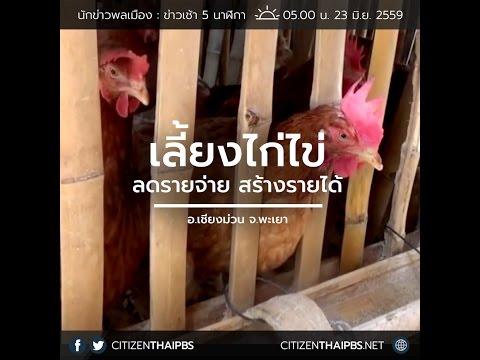 นักข่าวพลเมือง : เลี้ยงไก่ไข่ ลดรายจ่ายสร้างรายได้ l 23 มิ.ย. 59 l 05.00 น.