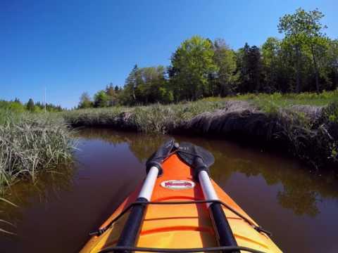 Morris Island Canal Paddle
