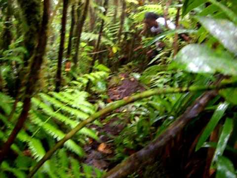 Nevis Peak Hike Video 1