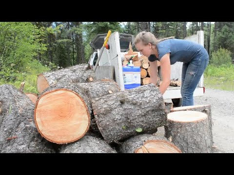What Is Gathering Cutting Firewood Really Like