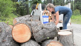 What is Gathering & Cutting Firewood REALLY Like?