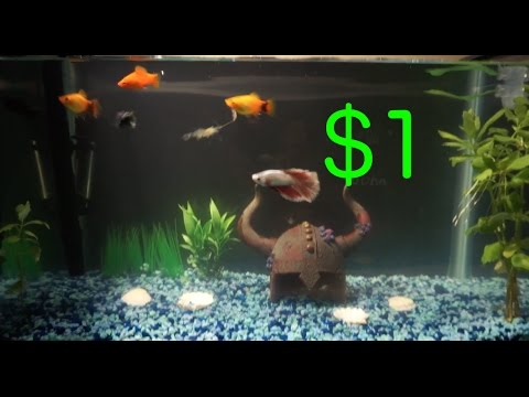 Diy Aquarium Background