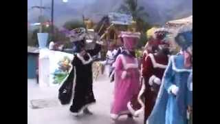 FIESTA DE SAN MARTIN municipio de quechultenango LOS CHINELOS.avi