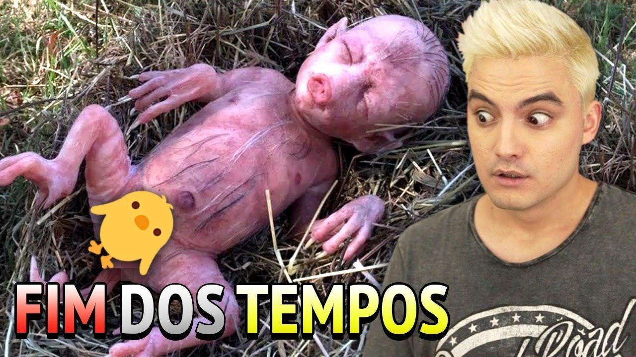 O MISTÉRIO DO PORCO-HUMANO