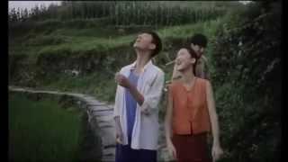 Balzac y la joven costurera china pelicula
