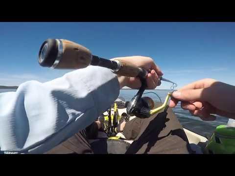 Kayak Fishing East Gippsland VIC + Far South Coast NSW - Jan 2018