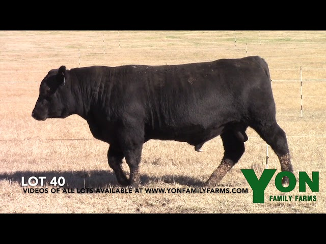 Yon Family Farms Lot 40