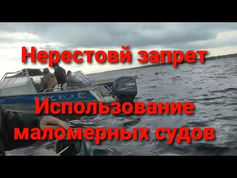 Нерестовый запрет 2019, использование маломерных судов. Разговор с инспектором Рыбохраны