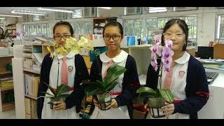Publication Date: 2018-03-19 | Video Title: 保良局甲子何玉清中學活動回顧(2017年9月~2017年2月