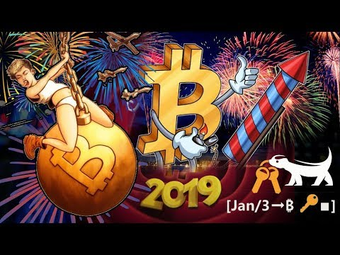 Bitcoin Price to $332,733?!? $BTC Whales Bought BILLIONS! Proof of Keys [Jan/3➞₿🔑∎]