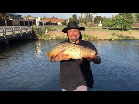 California Delta Mendota Canal Fishing