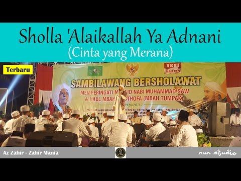 [NEW] Sholla 'Alaikallah Ya Adnani (Cinta yang Merana) - Az Zahir