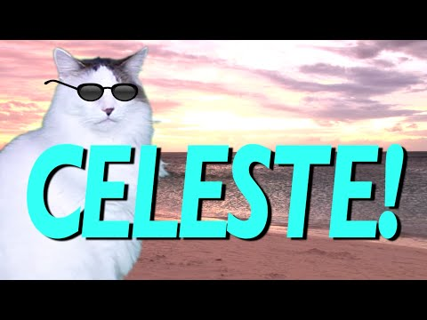HAPPY BIRTHDAY CELESTE EPIC CAT Happy Birthday Song YouTube