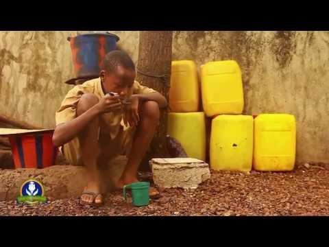 Life in Guinea