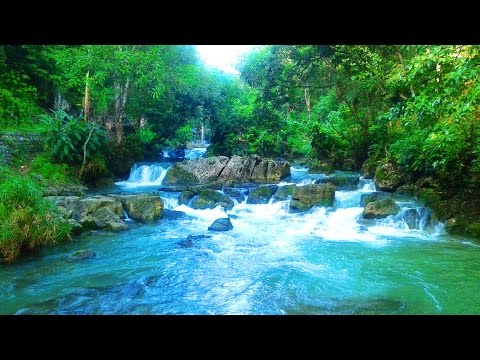 Noisy River or Oxford River, Manchester, Jamaica.