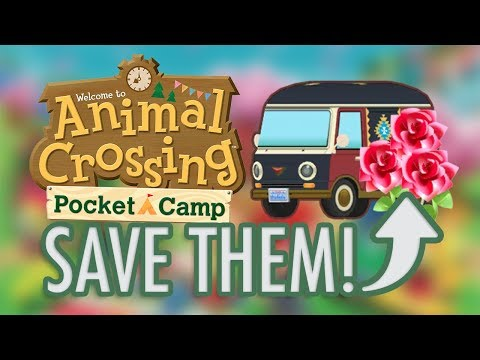 Animal Crossing: SAVE YOUR ROSES + New Paint Jobs