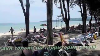 2015 HD прогулка по отелю Amora Beach Resort 4 PHUKET Пляж BANGTAO