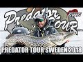 CWC - Predator Tour Sweden 2018
